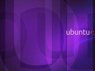 обои Фиолетовый дутый фон и надпись ubuntu фото
