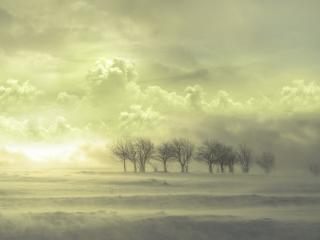 обои Стелится туман над равниной фото