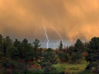 обои Небо в молниях у леса фото
