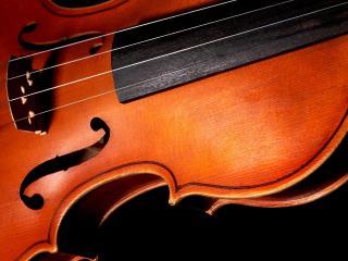 обои Скрипка на черном фоне фото