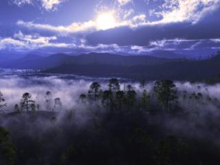 обои Дыхание земли фото