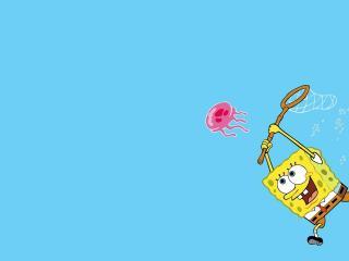 обои С сачком за медузой фото