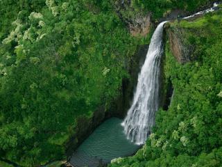 обои Весенняя природа у пенистого высокого водопада фото