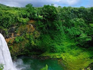 обои Водопад и отвесные скалы в зелени фото