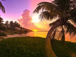 обои Мосты на пальмовых островах фото