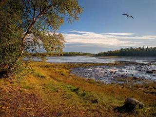 обои Осень на Беломорье фото