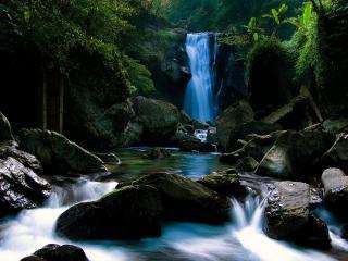 обои для рабочего стола: Небольшой водопад в тропическом лесу