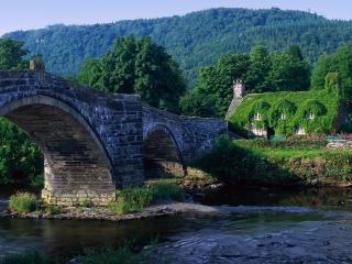 обои Каменный мост и домик заросший зеленью фото
