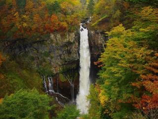 обои Речной водопад и лес осенний фото