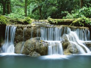 обои Водопадик в тропиках фото