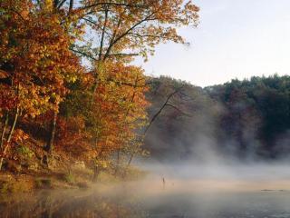 обои Осенний пар над озером фото
