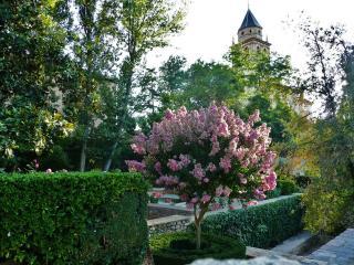 обои Весна в расцветшем парке фото
