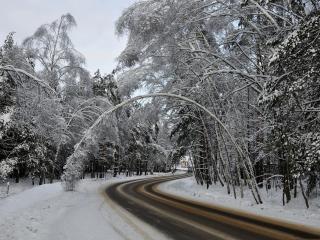 обои для рабочего стола: Наезженная дорога по зимнему снегу