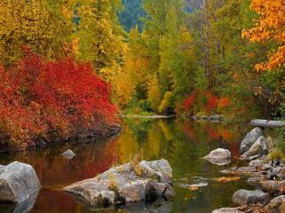 обои Разноцветный осенний Алтай фото