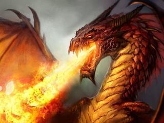 обои Огнем дышит дракон фото