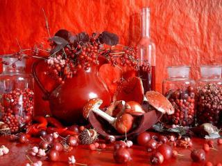 обои Натюрморт - Осенний, из красных ягод фото