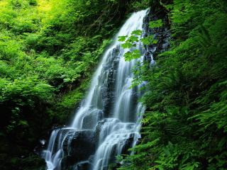 обои Водные пряди водопада фото