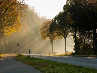 обои для рабочего стола: Поворот дороги и осенние деревья