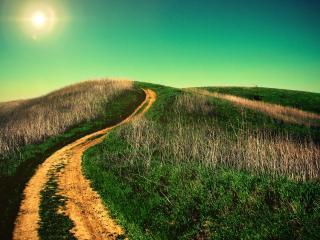 обои для рабочего стола: Извилистая дорога по холмах