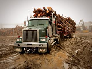 обои Western Star 4900 FA Logging Truck 2008 перед фото