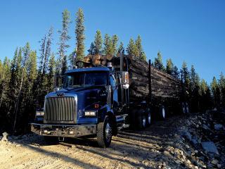 обои Western Star 4900 SB Timber Truck 2008 перед фото