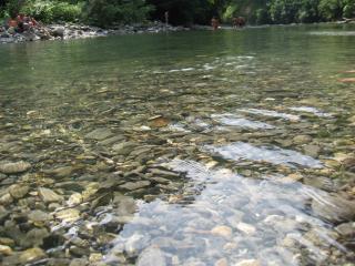 обои Река Безуменка фото