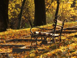 обои Опавшие листья на ступеньках у лавочки фото