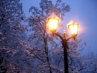обои Включенный фонарь зимним вечером фото