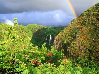 обои Зеленый лес,   небольшой водопад и радуга вдали фото