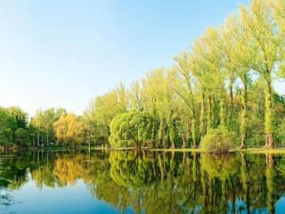 обои Весенний зеркальный пруд фото