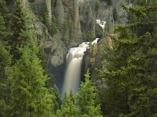 обои Река с водопадом горы и ели фото
