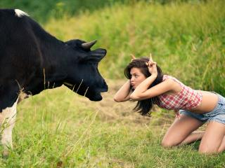обои Две подружки болтают на лужайке фото