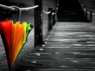 обои Зонт на канатном мостике фото