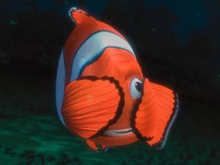обои Рыбка из в поисках немо фото