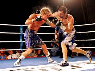 обои Жаркая схватка боксеров фото
