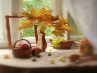 обои Натюрморт - Осенний, из желтых кленовых листьев фото