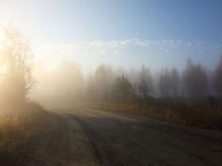 обои Дорога в туман фото