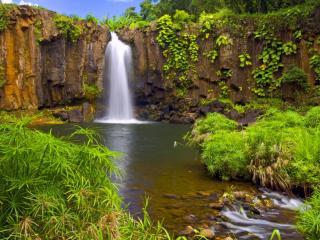 обои Водопад в яркой зелени фото