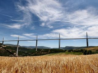 обои Облака и желтая пшеница фото