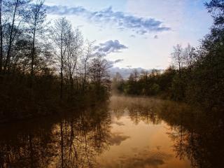 обои Туманное утро над рекой фото