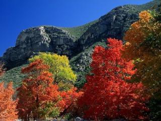 обои Пришла осень в горы фото