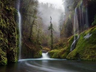 обои Водопады,   лес и река фото