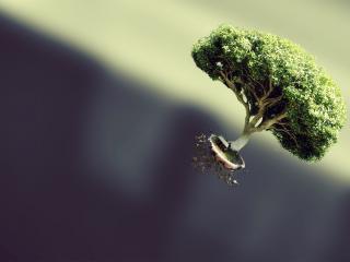 обои Летящее дерево фото