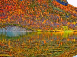обои И осень глядится в безвольные воды фото