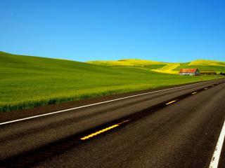 обои Весна у полевой дороги фото