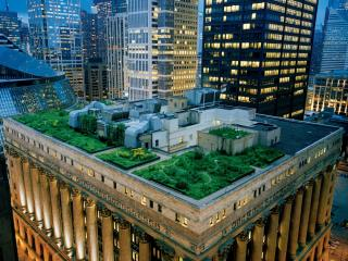 обои Мини парк на крыше города фото