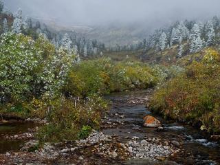 обои Осенний Зун-Хандагай фото