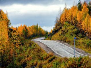 обои Осенняя дорога Севера фото