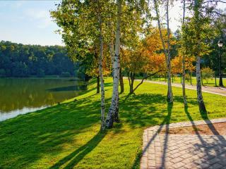 обои Уютная осень фото