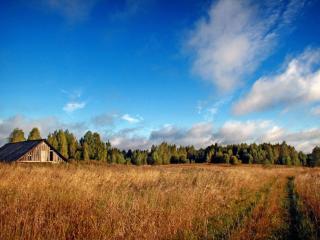 обои Деревенская осень фото